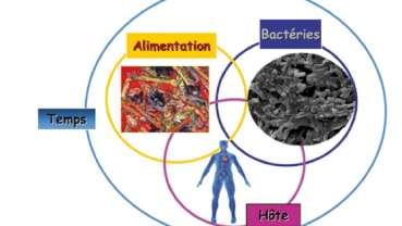 Savoir dépister et prévenir mauvaise alimentation et troubles du comportement alimentaire