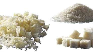 Allogreffes biologiques utilisées en dentisterie