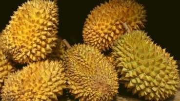 亚洲的一项研究提示:每天吃个榴莲,牙齿不长龋