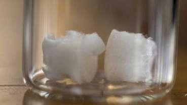 La cellulose végétale pourrait fournir un nouveau matériau pour les implants dentaires
