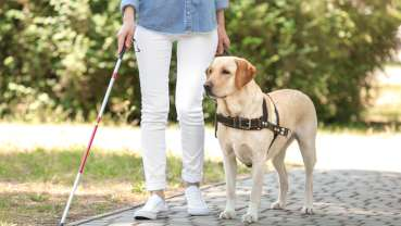 Union recommends practices update rules regarding assistance dogs