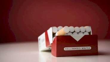 Nie ma istotnych różnic między palaczami a palaczami okazjonalnymi