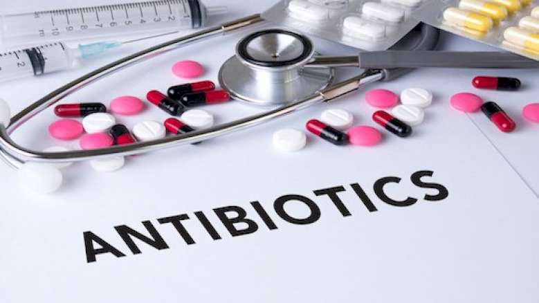 """Interview: """"Antibiotic resistance is a serious health issue"""""""