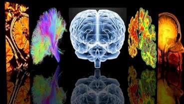 La gestione e la chirurgia dell'epilessia
